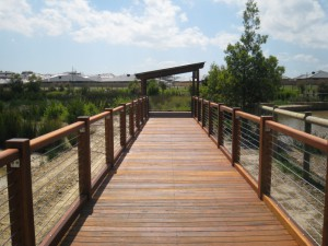 Boardwalk-Botanic Ridge
