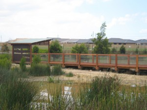 Boardwalk & Birdhide- Botanic Ridge