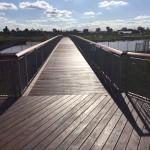 Harpley WetlandsIMG_0051