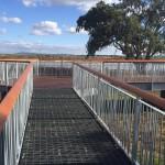 Harpley WetlandsIMG_0053