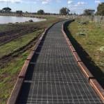 Harpley WetlandsIMG_0064