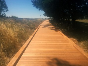 Castlemaine to Maldon Rail Trail – 120m boardwalk