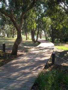 Timber Fork Shaped Boardwalk – Burwood