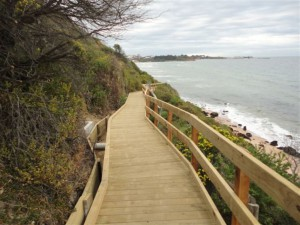 Timber Boardwalk – Caraar Creek, Mornington