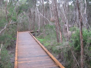 320m Timber Boardwalk with passing bays and viewing platforms – Mt Martha
