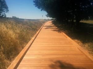 Castlemaine to Maldon Rail Trail – 120m boardwalk